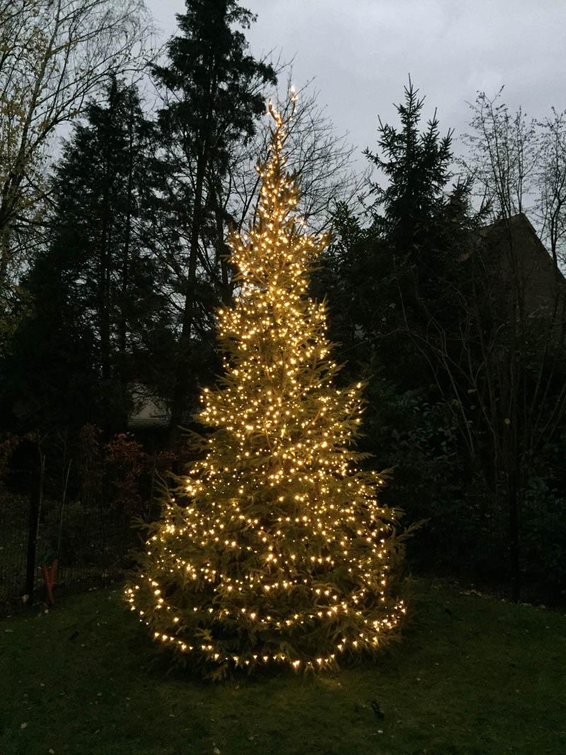 Deco De Noel Dans Le Jardin décoration de noël - parlons jardins